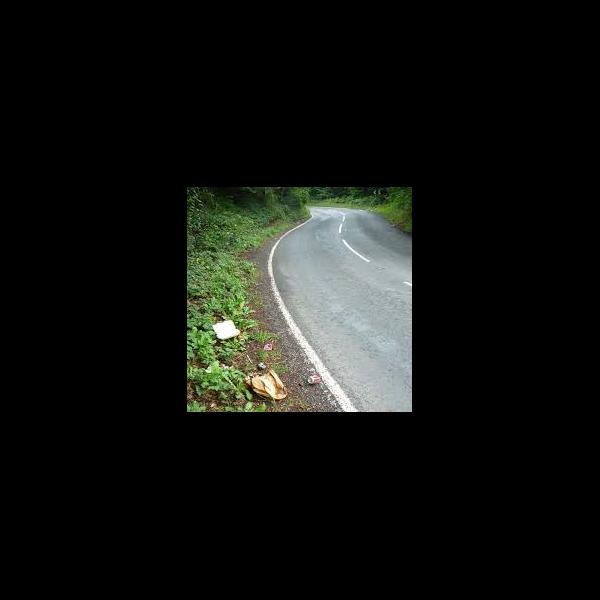 Roadside Litter
