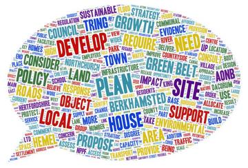 Local Plan wordcloud