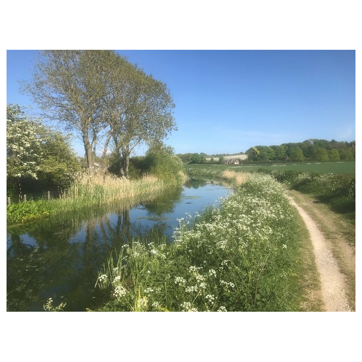 Wendover Canal near Wendover (Wendover Arm Trust)